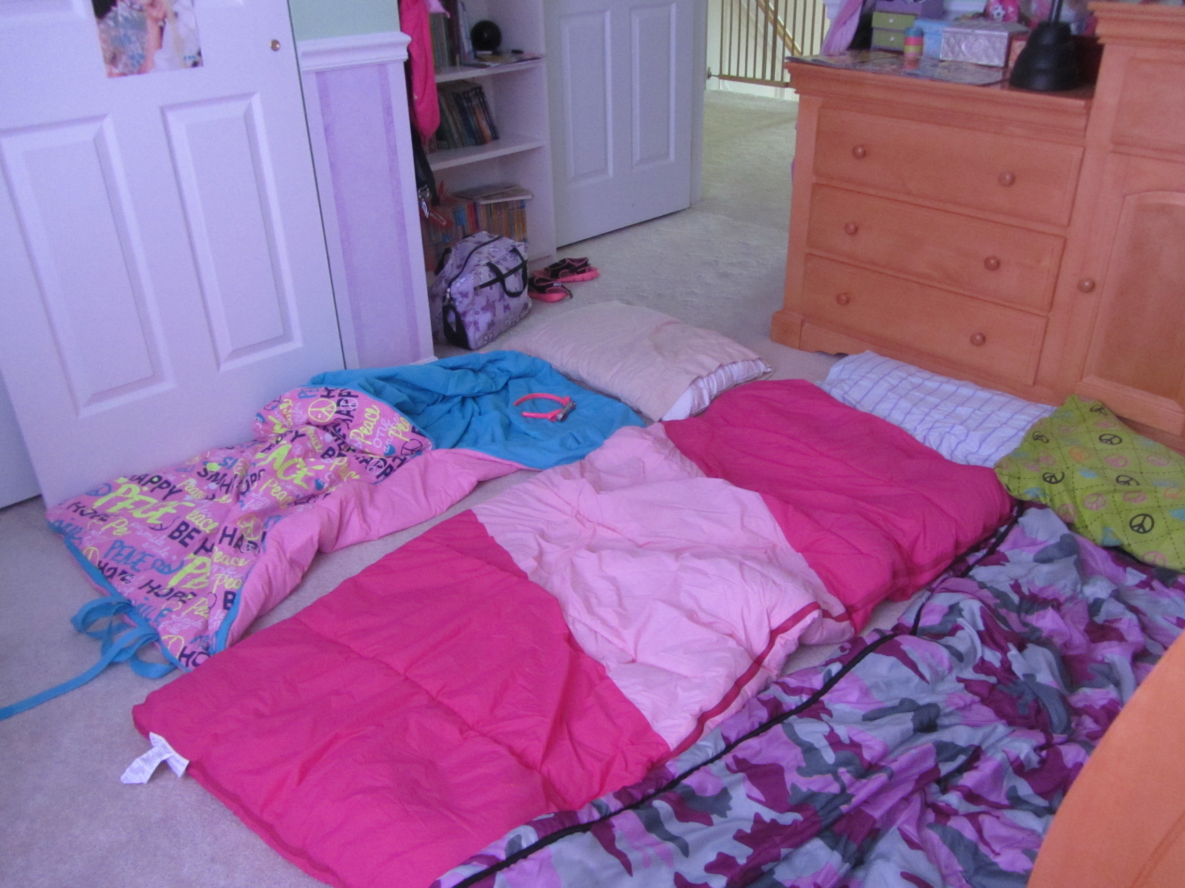 Sleeping Bags That Were Never Used Since They All Squeezed In Megans Bed Like Kittens