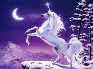 unicorn-11273